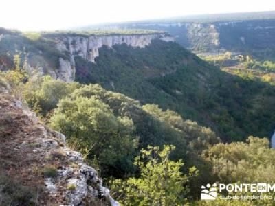Cañones y nacimento del Ebro - Monte Hijedo;fruto del tejo;sitios visitar madrid